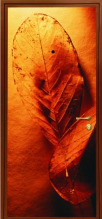 Фотопанель № 116 предназначена для установки в металлические двери