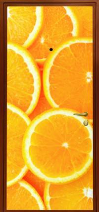 Фотопанель № 739 предназначена для установки в входные металлические двери